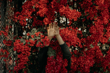 Mysterious Woman Hiding in Red Flowers