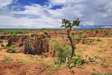 Tatacoa desert, Huila, Tolima, Colombia