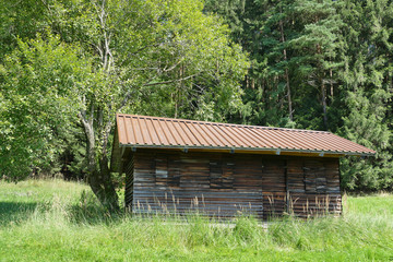 Wooden hut at the edge of the forest