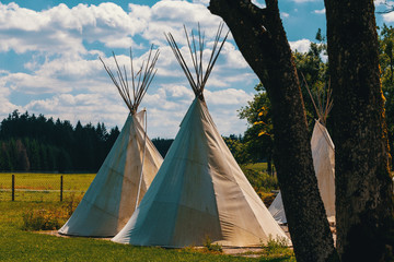 teepee conical tent made from animal skins