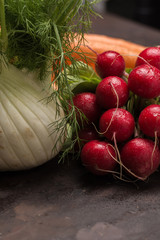 Fresh fennel with radishes and carrots ecological.