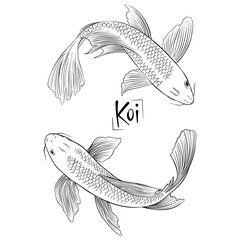 Hand drawn outline vector couple of koi fish isolated