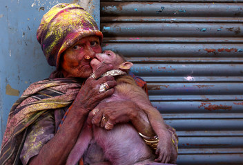 A woman daubed in colours kisses her monkey during Holi celebrations in Chennai