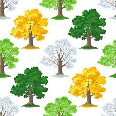 Seamless Pattern, Oak Tree, Seasons Summer, Autumn, Winter and Spring, Isolated on Tile White Background. Vector