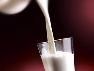 il latte, in tutte le sue meravigliose forme