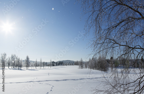 Wintry Landscape Snowy Wallpaper Blue Sky With Snowflakes Falling Foot Prints In The