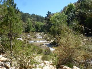 Parque Natural de Cazorla, Jaen (Andalucia,España) Ruta rio Borosa