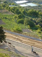 Sabiote,pueblo español de la provincia de Jaén, Andalucía (España). Situado en la comarca de La Loma