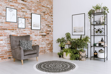 Living room interior with plants