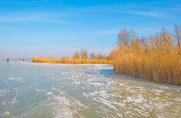 Ice skating on a frozen lake in sunlight in winter