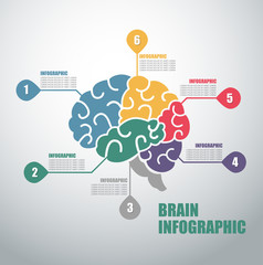 Modern infographics options banner with colorful brain and in outline style.
