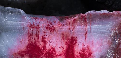 blood on ice, murder