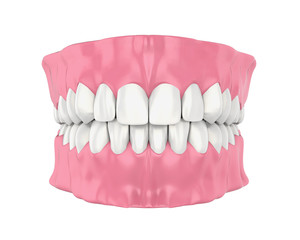 Mouth Gum and Teeth Isolated