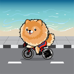 Cute cartoon character design Pomeranian dog action ridding a bicycle on street , beach background