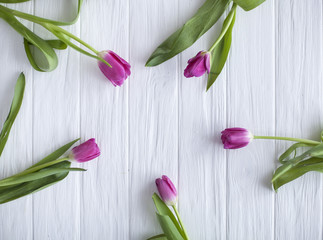 Fresh tulips on a wooden white background for Mother's Day. frame of flowers