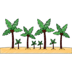 palm trees sand beach landscape  icon image vector illustration design  sketch style