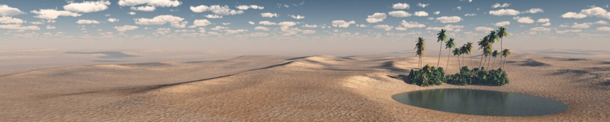 oasis, a panorama of the desert of sand