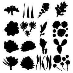 Black silhouettes cactus set. Hand drawn plants. Exotic floral sketch illustration collection. Different cactuses in monochrome style. Vector.