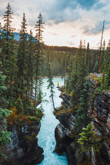 A ledge overlooking Athabasca River near Athabasca Falls in Jasper National Park