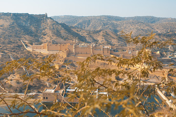Amer Fort seen between the trees