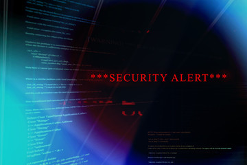 Security alert on a computer system and server