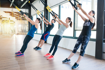 group of fitness TRX suspension straps training