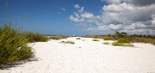 Blue sky over white sand and green beach grass of Tigertail Beach
