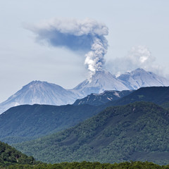 Scenery summer mountain landscape of Kamchatka Peninsula: explosive-effusive eruption of Zhupanovsky Volcano powerful plume of gas, steam, ash from crater active volcano, mountains with green forest