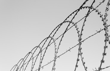 Razor wire from a compound on a sunny day
