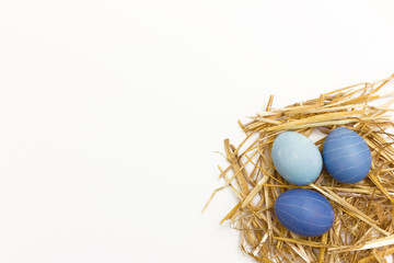 Osternest mit drei blau gefärbten Ostereiern