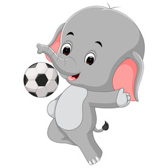 funny elephant cartoon with ball