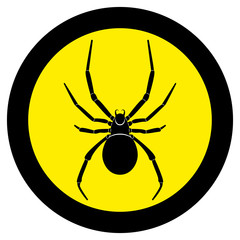 Vector image of spider silhouette