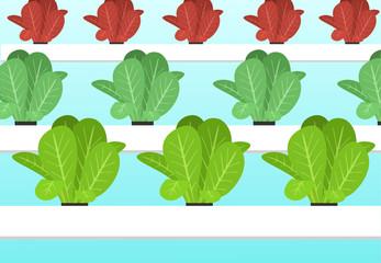 Hydroponics plants farm in flat vector cartoon