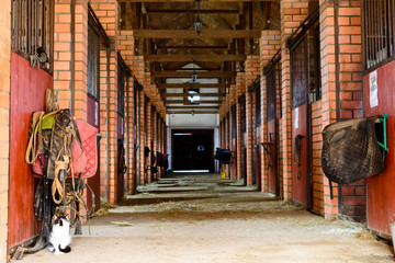 Empty horse stable