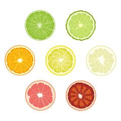 Set of isolated colored circle slices of bergamot, lime, lemon, orange, pomelo, bloody orange, pink grapefruit on white background. Realistic citrus fruit collection.
