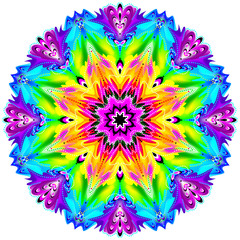 Fantasy ornament done in kaleidoscopic style. Stylized illustration of flower. Geometric circle image.
