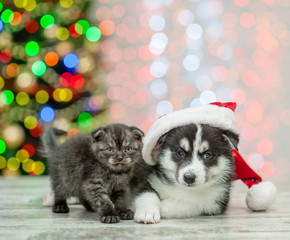 Husky puppy in red santa hat lying with kitten on a background of the Christmas tree
