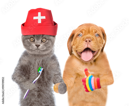 funny kitten in medical hat with toothbrush and puppy showing thumbs