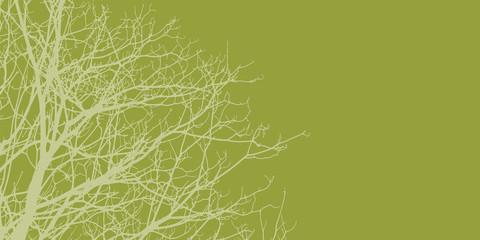 branch on green