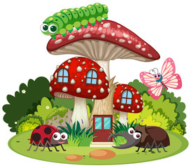 Four types of insects on mushroom house