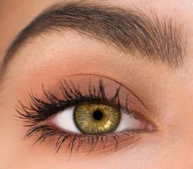 bel oeil féminin