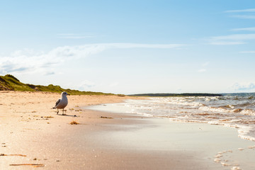 Brackley Beach in Prince Edward Island National Park