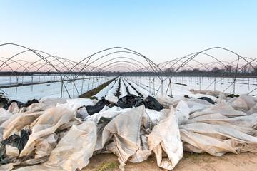 Folienabfälle in der Landwirtschaft