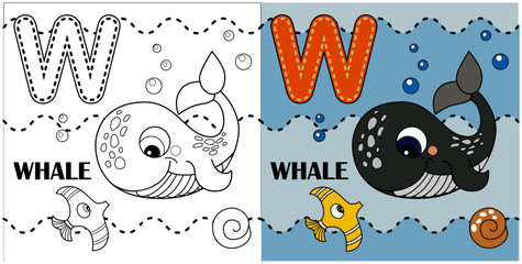 W letter, whale, coloring book or page, vector cartoon. Alphabet