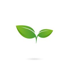 double leaf logo icon