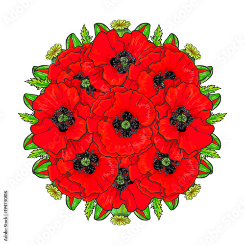 Vector Sketch Red Poppy Flower Bouquet With Closed Opened Blossom