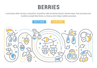 Website Banner and Landing Page of Berries.