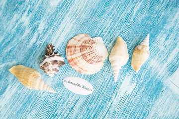 Vacation concept. Seashells on blue wooden background, copy space