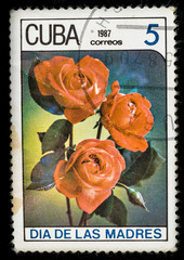Old postage stamp printed in Cuba in 1987 with a bouquet of red rose flowers, mother's day series.