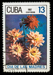 Old postage stamp printed in Cuba in 1987 with a bouquet of dahlia flowers, mother's day series